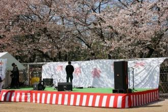 「まるこ花見市」の音楽イベント設営