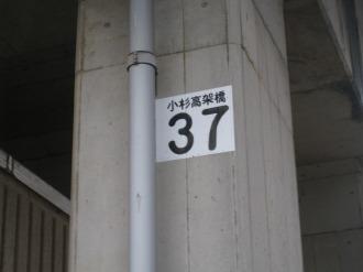 小杉高架橋「37」