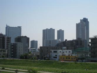 丸子橋から見る武蔵小杉の高層ビル群