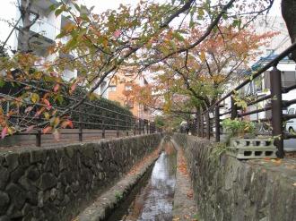 二ヶ領用水の紅葉