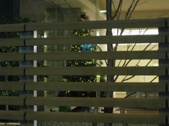 武蔵小杉駅南口線から見たレジデンスのツリー